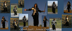 Armour Pack 2