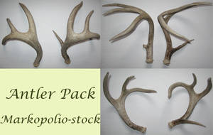 Antler Pack - Feb11 08 by markopolio-stock