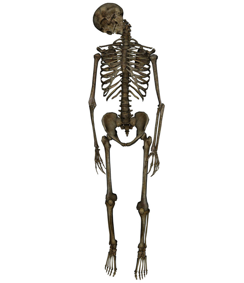 Skeleton - Hanged 1 by markopolio-stock