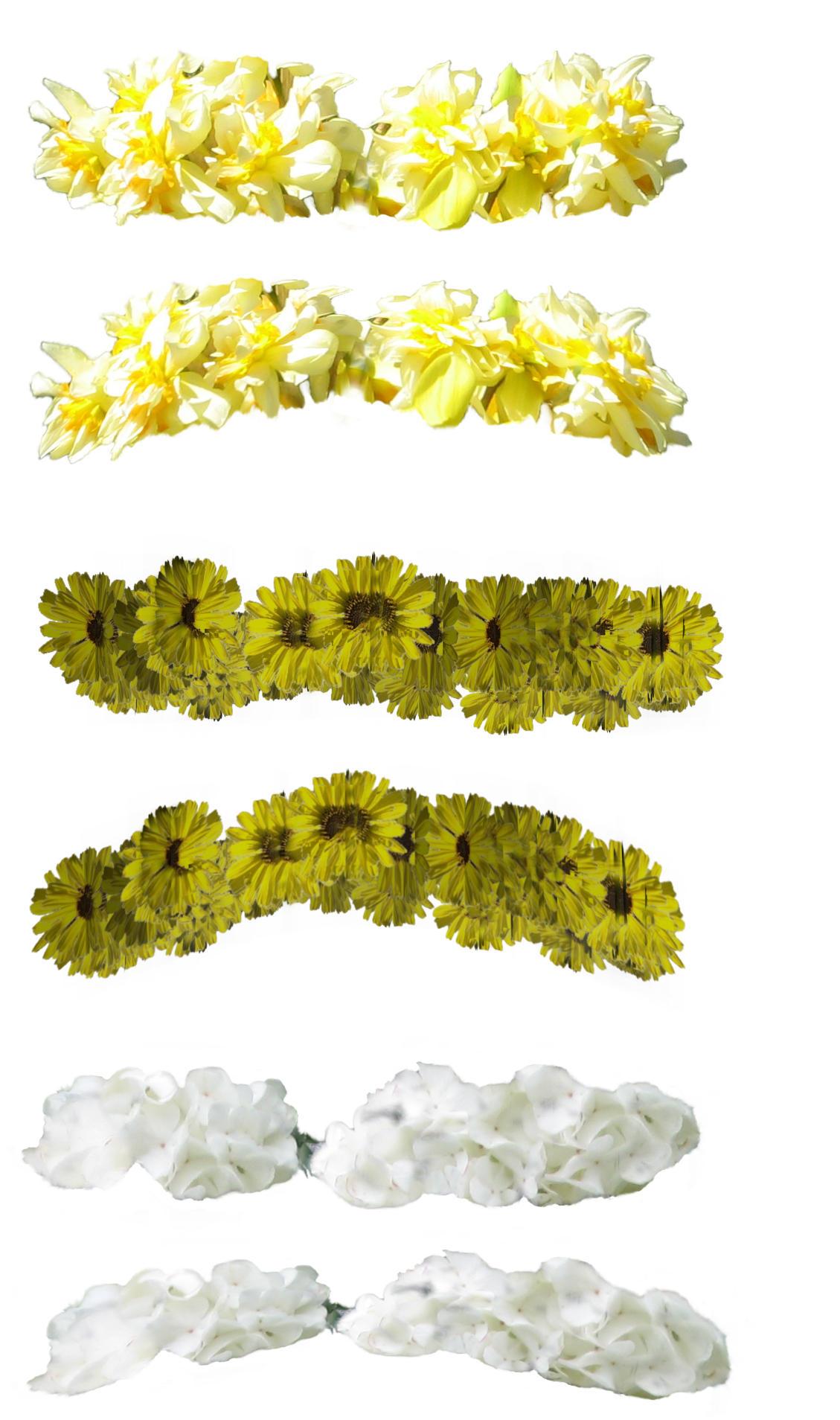 Deviantart Flower Crown Flower Crowns By Markopolio Stock