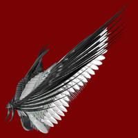 Wings Archangel by markopolio-stock