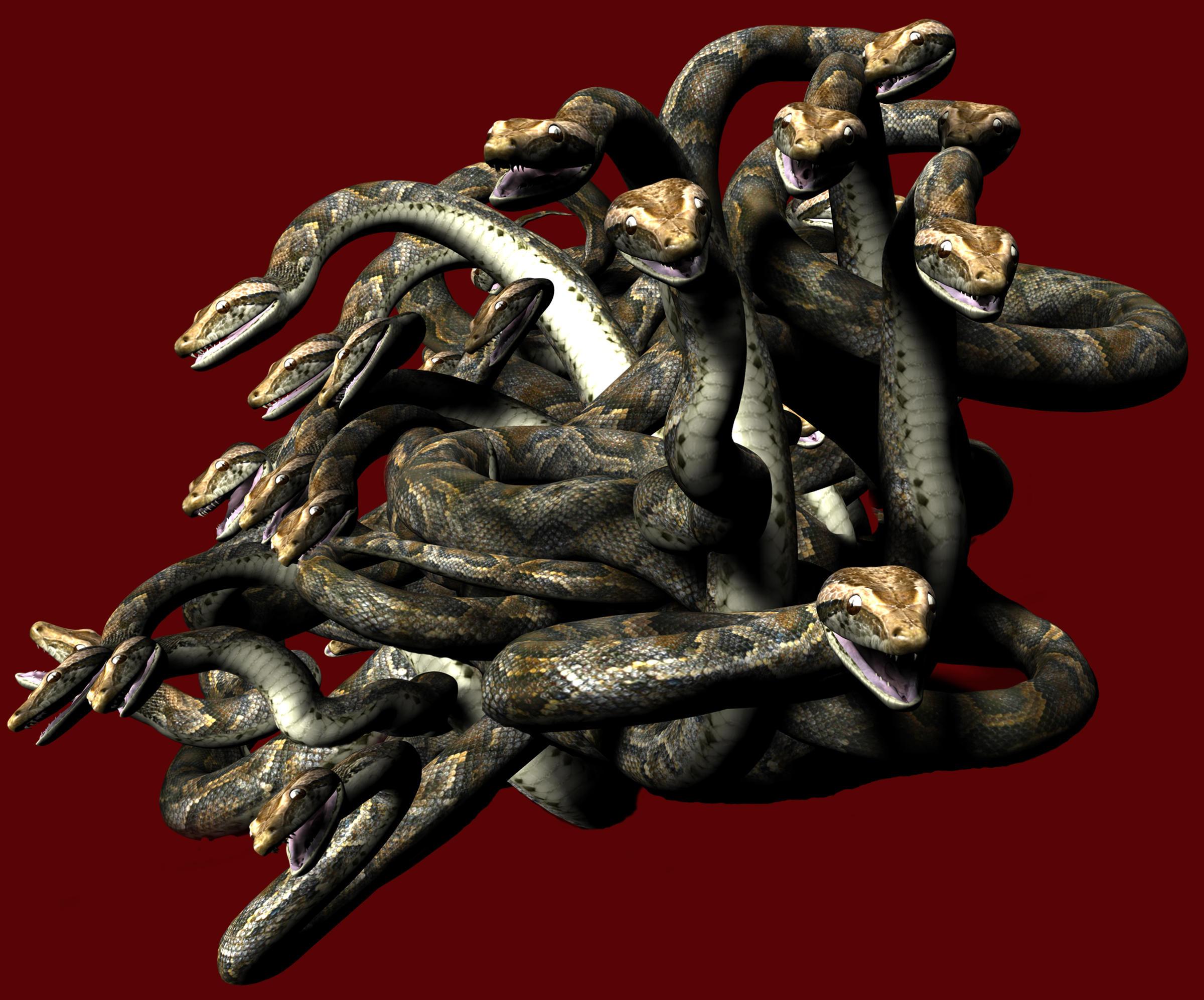 Medusa - Snake Wig 1 by markopolio-stock
