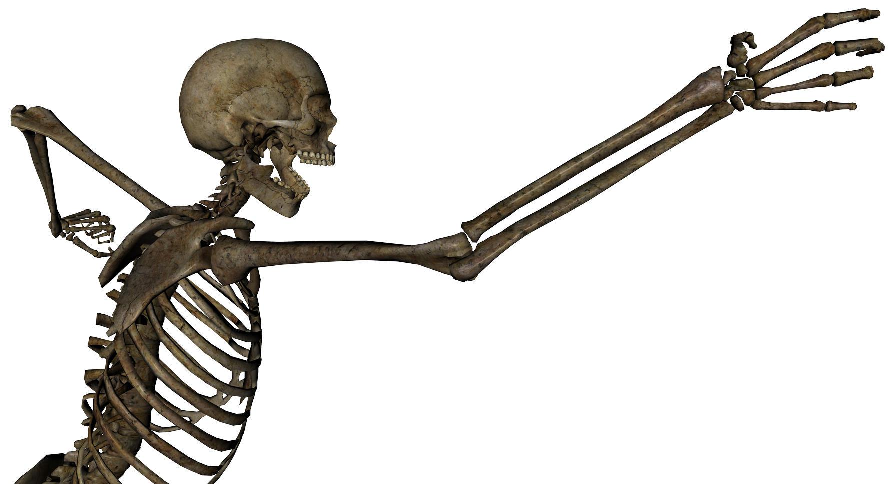 Skeleton - Grasping 1 by markopolio-stock