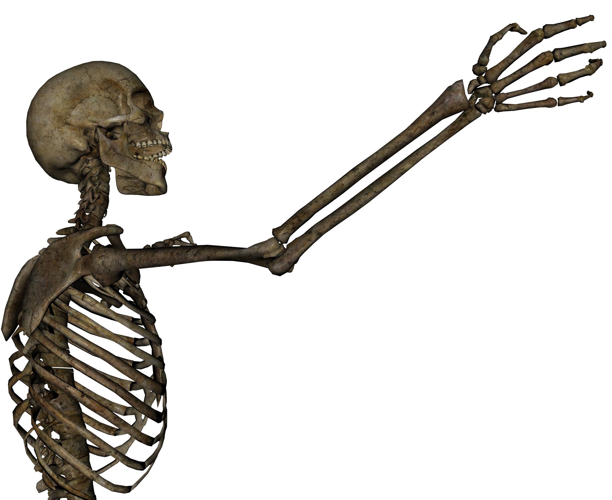 Skeleton - Grasping 2