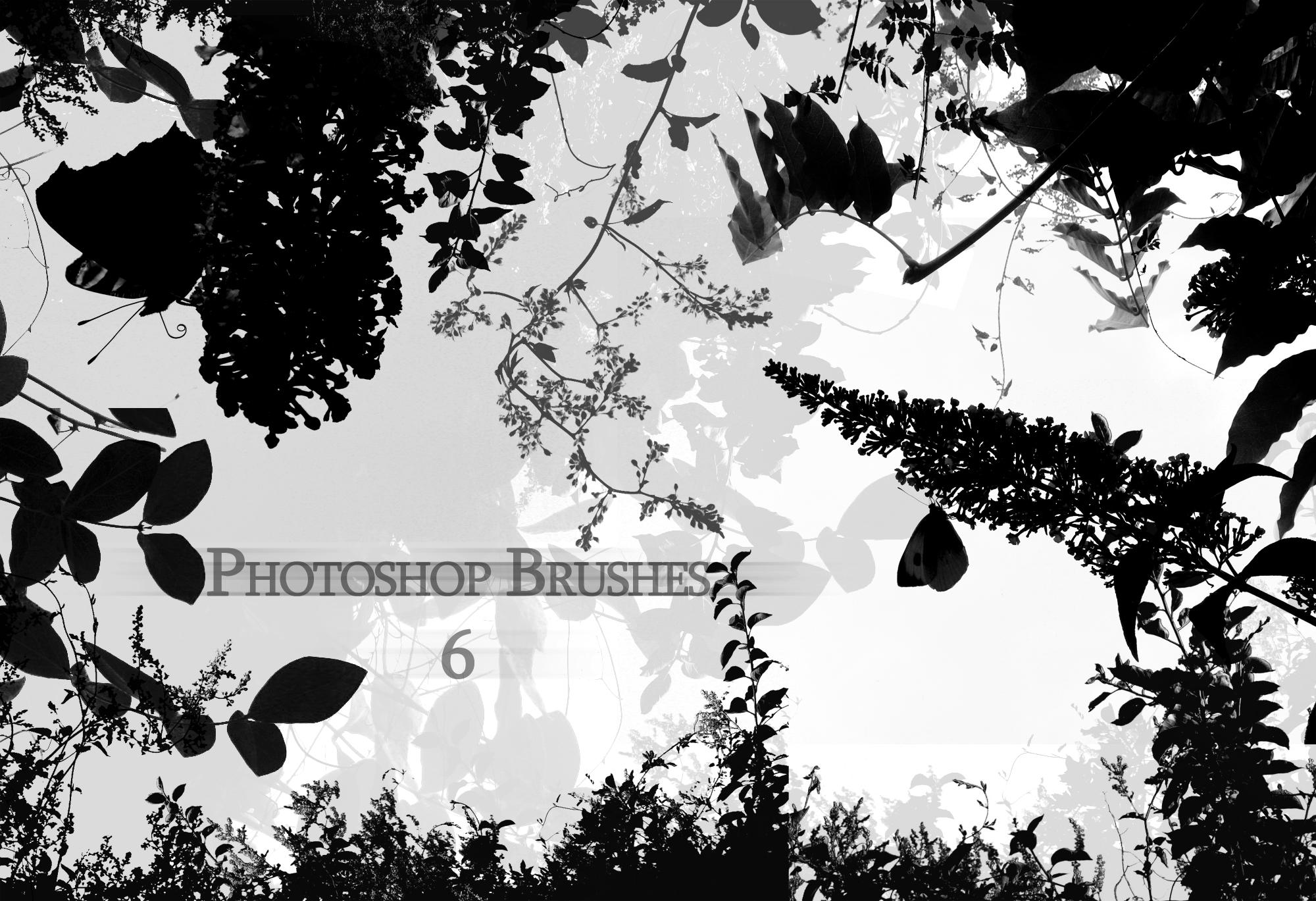 photoshop brushes 6 by greenday862