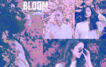 Blossom PSD Coloring