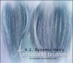 V.2 Dynamic Hairy Brushes