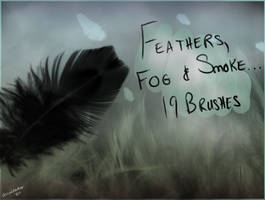 Fog, feathers and smoke