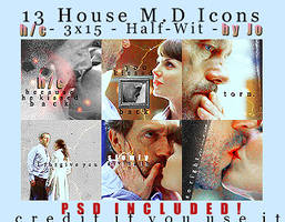HouseIconsPack- Half-Wit + PSD by ItsJoBitch