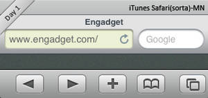iTunes Safari-sorta