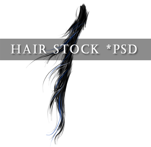 - Hair Stock PNG -