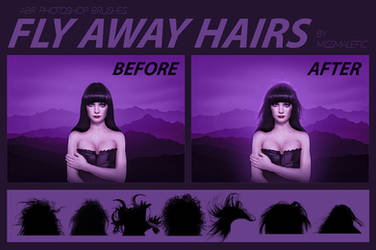 Hair Brush (Fly Aways)