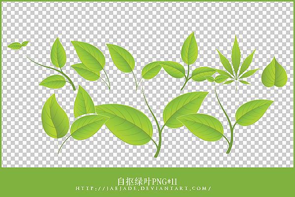 http://fc00.deviantart.net/fs70/i/2012/134/b/9/green_leaves_png_by_jaejade-d4zq6pa.jpg