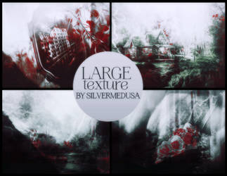 Large Texture #3 by SilverMedusa by SilverMedusa