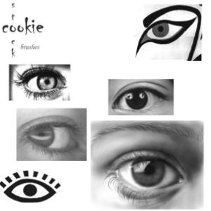 eye brushes. cookiestoc by cookiestoc