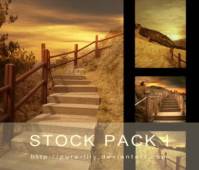 STOCK PACK I