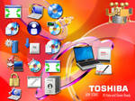Toshiba OEM Icons
