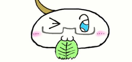 APH Mochi America with Lettuce :3