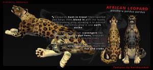 FREE!! African Leopard by 0Abarai0