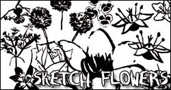 Sketch flowers PS brushes