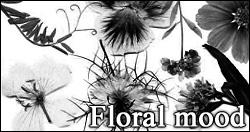 Floral mood PS brushes