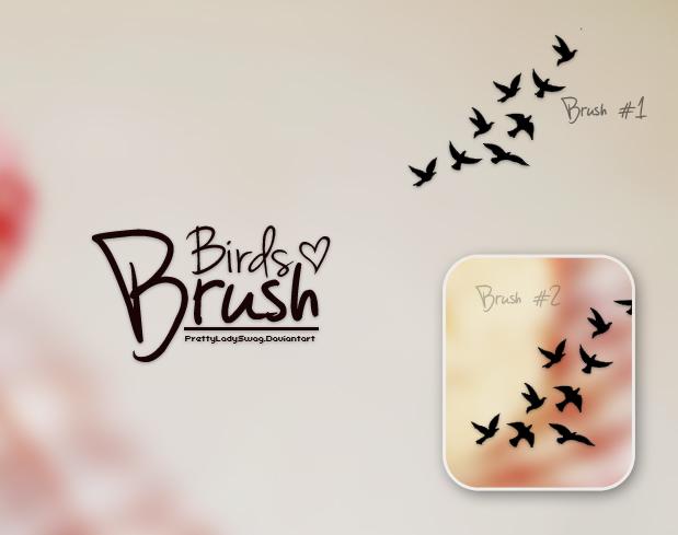 Birds Brushes by PrettyLadySwag