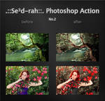 Sedrah Photoshop Action No2