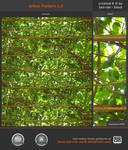 Arbor Pattern 1.0