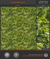 Herbs Pattern 1.0 by Sed-rah-Stock