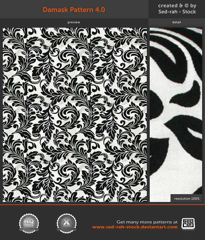 Damask Pattern 4.0 by Sed-rah-Stock
