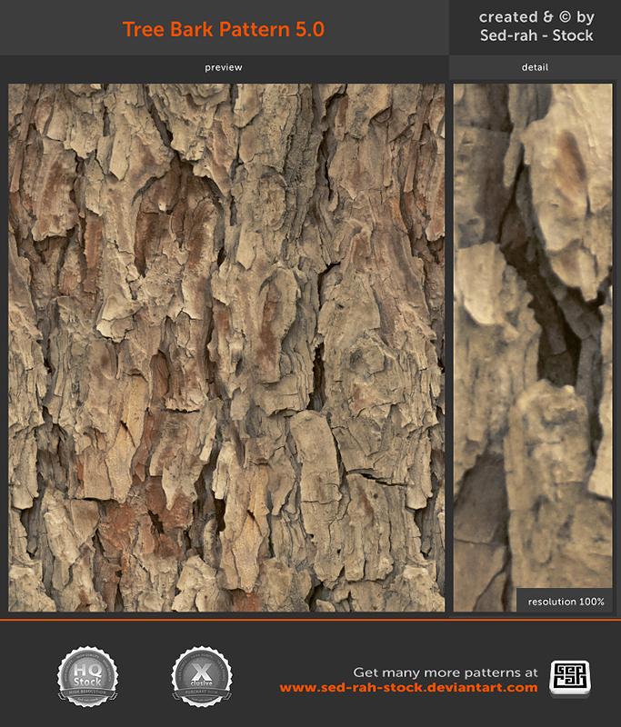 Tree Bark Pattern 5.0 by Sed-rah-Stock