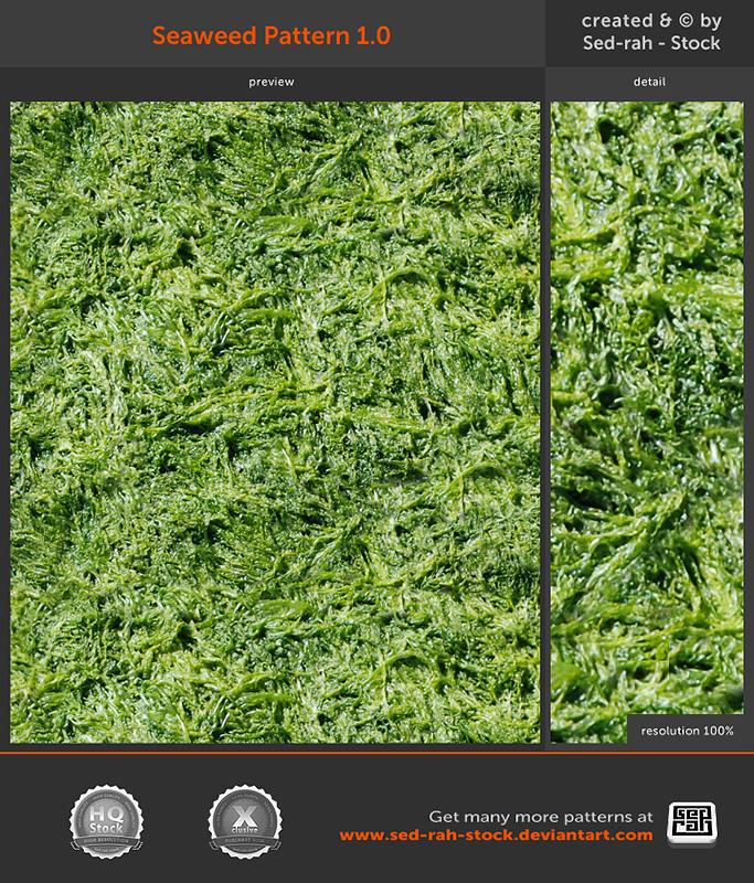 Seaweed Pattern 1.0 by Sed-rah-Stock