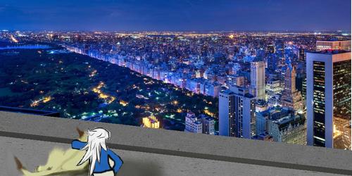 New York Overlook