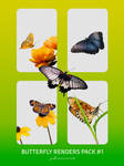Butterfly Renders Pack #1