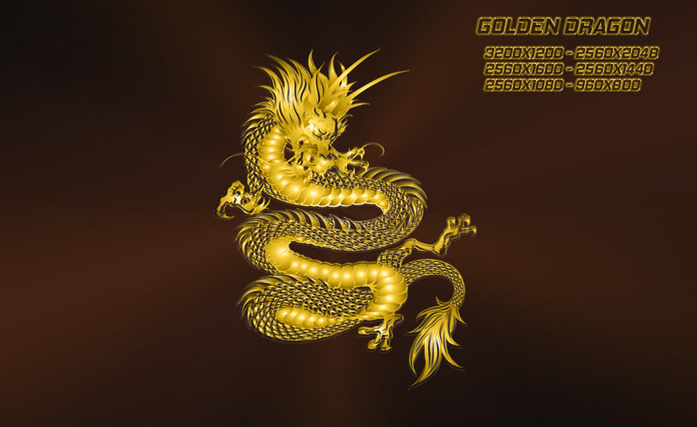 Golden Dragon by ilnanny