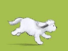 Sasha running
