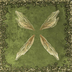 Froud Wings