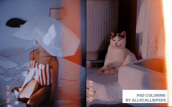 Huji Effect ( By Allscallie )