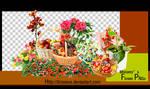 FlowerPngs