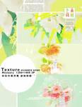 SummerShine textures