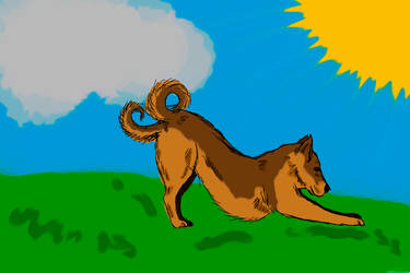 Like a dog with 2 tails 2