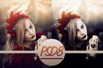 PSD #8