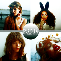 PSD #14 by maybe-bec