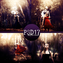 PSD #17 by maybe-bec