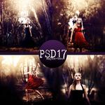 PSD #17