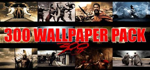 300 WallPack in 2560x1600 HD