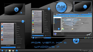 blackcat 51 windowblind by coolcat21