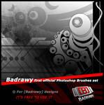 badrawy brushes set 1