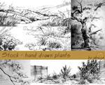 Stock - hand drawn plants