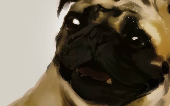 Dogs - Speed Painting